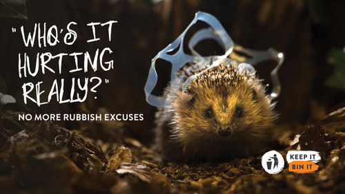 Keep Britain Tidy Poster - 'No more rubbish excuses'